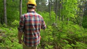 Ένας εργαζόμενος αλυσιδοπριόνων περνά από τα ξύλα απόθεμα βίντεο