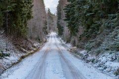 Ένας ευθύς δρόμος μέσω ενός σουηδικού δάσους το Δεκέμβριο στοκ εικόνα