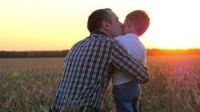Ένας ευτυχής πατέρας φιλά το παιδί του στο ηλιοβασίλεμα σε έναν τομέα σίτου Ανθρώπινες συγκινήσεις και σχέσεις απόθεμα βίντεο