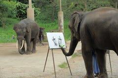 Ένας ελέφαντας σύρει μια εικόνα Στοκ φωτογραφία με δικαίωμα ελεύθερης χρήσης