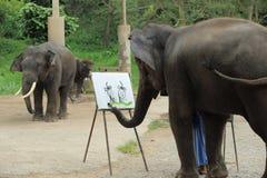 Ένας ελέφαντας σύρει μια εικόνα Στοκ Εικόνα