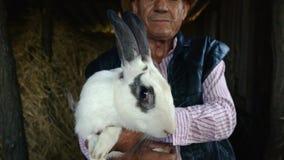 Ένας ηλικιωμένος αγρότης σε ένα καπέλο αχύρου κρατά ένα μεγάλο άσπρο κουνέλι Πορτρέτο ενός ατόμου στο υπόβαθρο του σανού απόθεμα βίντεο