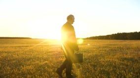 Ένας ηλικιωμένος επιχειρηματίας στο κοστούμι με το διαθέσιμο χέρι χαρτοφυλάκων περπατά πέρα από τον τομέα στις θερμές ακτίνες του απόθεμα βίντεο