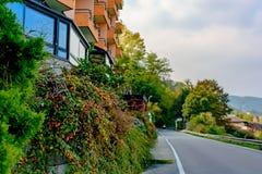 Ένας θάμνος με τα κόκκινα μούρα που αυξάνονται κατά μήκος του ρομαντικού ξενοδοχείου στην Ιταλία Πόλη Arona Μετά από τη μπροστινή Στοκ φωτογραφία με δικαίωμα ελεύθερης χρήσης