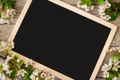 Ένας θαυμάσιος κλάδος ενός ανθίζοντας δέντρου αχλαδιών με ένα διάστημα αντιγράφων σε έναν μαύρο πίνακα Στοκ Εικόνα