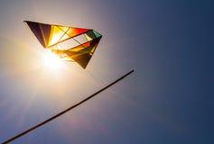 Ένας ικτίνος στον ηλιόλουστο ουρανό Στοκ εικόνες με δικαίωμα ελεύθερης χρήσης
