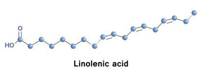 Ένας λινολενικός είναι ένα ωμέγα λιπαρό οξύ 3 Στοκ εικόνες με δικαίωμα ελεύθερης χρήσης