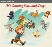 Ένας ιδιωματισμός που παρουσιάζει μια βροχή με τα ζώα διανυσματική απεικόνιση