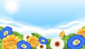 Ένας κήπος λουλουδιών στη φύση ελεύθερη απεικόνιση δικαιώματος