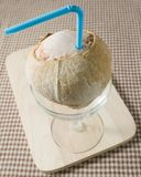 Ένας και γλυκός χυμός νερού καρύδων Στοκ εικόνες με δικαίωμα ελεύθερης χρήσης