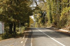 Ένας καλυμμένος δρόμος με τα δέντρα στοκ εικόνα με δικαίωμα ελεύθερης χρήσης
