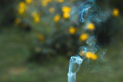 Ένας καπνίζοντας παλαιός λαμπτήρας κηροζίνης σε μια πράσινη χλόη Στοκ Εικόνα