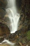 Ένας καταρράκτης στο Henri Pittier National Park, Βενεζουέλα Στοκ εικόνες με δικαίωμα ελεύθερης χρήσης