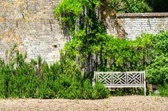Ένας κενός ξύλινος πάγκος από έναν τοίχο κήπων στοκ εικόνα