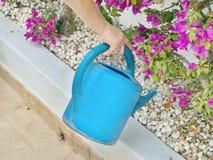 Ένας κηπουρός στην εργασία χύνει τα flowerbeds στοκ φωτογραφία