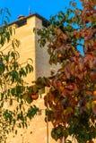 Ένας κλάδος με tangerines σε ένα υπόβαθρο ενός παλαιού πύργου κάστρων Ιταλία, Angera Castle Rocca Di Angera Στοκ Εικόνες