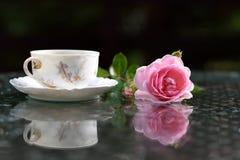 Ένας κλάδος των τριαντάφυλλων και του εκλεκτής ποιότητας φλυτζανιού τσαγιού στοκ φωτογραφία με δικαίωμα ελεύθερης χρήσης