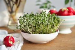 Ένας κορμός του υγιούς πρόχειρου φαγητού 2 ραδικιών Στοκ εικόνα με δικαίωμα ελεύθερης χρήσης