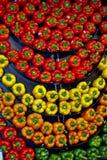 Ένας κυματιστός τοίχος των ζωηρόχρωμων πιπεριών Στοκ φωτογραφία με δικαίωμα ελεύθερης χρήσης