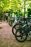 ένας μεγάλος αριθμός ποδηλάτων στο χορτοτάπητα Στοκ Εικόνες
