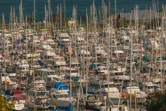 Ένας μεγάλος αριθμός γιοτ στη μαρίνα, λιμάνι Κόλπων, Ώκλαντ, Νέα Ζηλανδία Στοκ Φωτογραφίες