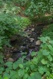 Ένας μικρός γρήγορος ποταμός βουνών, σπάζοντας μικρές πέτρες στο δρόμο του Στοκ Εικόνες