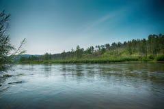 Ένας μικρός ποταμός που τρέχει μέσω των λόφων που καλύπτονται με το δάσος Στοκ εικόνα με δικαίωμα ελεύθερης χρήσης