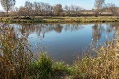 Ένας μικρός ποταμός το φθινόπωρο Στοκ εικόνες με δικαίωμα ελεύθερης χρήσης