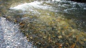 Ένας μικρός ποταμός Sema βουνών που ρέει στις δύσκολες τράπεζες που εισβάλλονται με το δάσος φιλμ μικρού μήκους