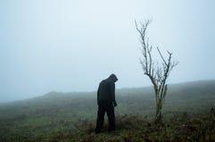 Ένας μυστηριώδης απόκοσμος αριθμός που υπερασπίζεται ένα δέντρο σε μια ομιχλώδη χειμερινή βουνοπλαγιά στοκ εικόνες