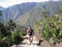 Ένας νέος αρσενικός τουρίστας που κάνει τον τρόπο του στην κορυφή Machu Picchu μ στοκ εικόνες
