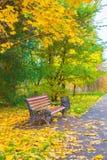 Ένας ξύλινος πάγκος σε ένα πάρκο φθινοπώρου Στοκ φωτογραφίες με δικαίωμα ελεύθερης χρήσης