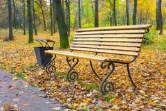 Ένας ξύλινος πάγκος σε ένα πάρκο φθινοπώρου Στοκ Εικόνες