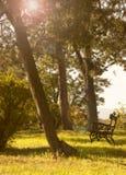 Ένας πάγκος στο πάρκο, ηλιοβασίλεμα Στοκ Εικόνες