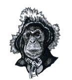 Ένας πίθηκος σε ένα καπέλο Στοκ φωτογραφίες με δικαίωμα ελεύθερης χρήσης