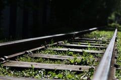 Ένας παλαιός ξεχασμένος σιδηρόδρομος με τη χλόη στοκ εικόνα