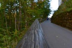 Ένας παλαιός ξύλινος φράκτης κατά μήκος του δρόμου περνά στο άπειρο από τη φύση στοκ εικόνες με δικαίωμα ελεύθερης χρήσης