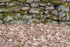 Ένας παλαιός προκαλούμενος από τον άνθρωπο τοίχος πετρών με το βρύο σε το στοκ φωτογραφίες με δικαίωμα ελεύθερης χρήσης