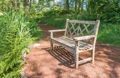 Ένας παλαιός ξύλινος πάγκος στον όμορφο βοτανικό κήπο με τη σκιά φωτός του ήλιου και σκιά στο χρόνο ημέρας Στοκ Εικόνα