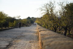 Ένας παλαιός ρωμαϊκός δρόμος Στοκ Εικόνα