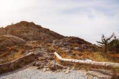 Ένας περίπατος γύρω από το μεγάλο arber Στοκ εικόνες με δικαίωμα ελεύθερης χρήσης