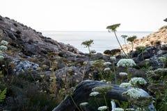 Ένας περίπατος γύρω από Ibiza Στοκ εικόνες με δικαίωμα ελεύθερης χρήσης
