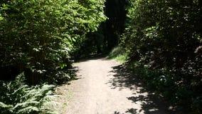 Ένας περίπατος μέσω του δάσους φιλμ μικρού μήκους