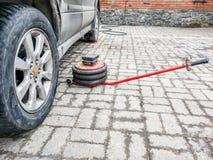 Ένας πνευματικός γρύλος βρίσκεται σε ένα πάτωμα κεραμιδιών δίπλα σε ένα σκονισμένο αυτοκίνητο σε ένα κατάστημα επισκευής αυτοκινή στοκ φωτογραφία με δικαίωμα ελεύθερης χρήσης