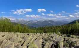 Ένας ποταμός πετρών στα βουνά και ένα παχύ πράσινο δάσος μια σαφή, ηλιόλουστη θερινή ημέρα Στοκ Εικόνες