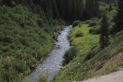 Ένας ποταμός σε μια κοιλάδα στα δύσκολα βουνά Κολοράντο κατά τη διάρκεια μιας θερινής ημέρας στοκ εικόνες με δικαίωμα ελεύθερης χρήσης