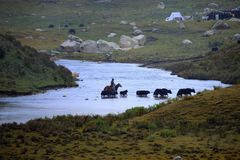 Ένας ποταμός στα βουνά Bayankala Στοκ φωτογραφία με δικαίωμα ελεύθερης χρήσης