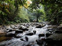 Ένας ποταμός στην πράσινη ζούγκλα Sumatra Στοκ Εικόνες