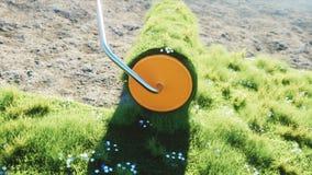 Ένας ρόλος της χλόης στη γη με τις πεταλούδες Βούρτσα της χλόης εικόνες οικολογίας έννοιας πολύ περισσότεροι το χαρτοφυλάκιό μου  φιλμ μικρού μήκους
