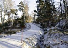 Ένας δρόμος στη Σουηδία με το χιόνι Στοκ εικόνες με δικαίωμα ελεύθερης χρήσης